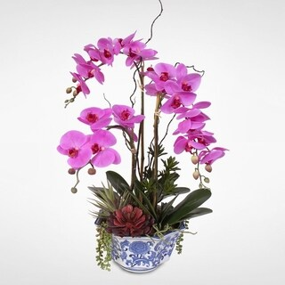 Real Touch Phalaenopsis Silk Orchid Arrangement with Succulents in a Porcelain Pot