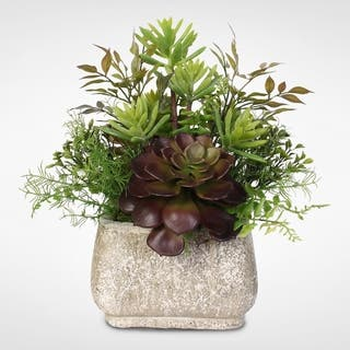 Artificial Succulent Arrangement in a Stone Pot|https://ak1.ostkcdn.com/images/products/12401100/P19221338.jpg?impolicy=medium