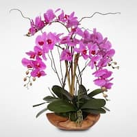 Purple Real Touch Phalaenopsis Silk Orchid Arrangement in a Natural Teak Bowl