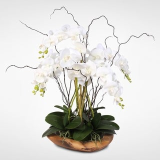 White Real Touch Phalaenopsis Silk Orchid Arrangement in a Natural Teak Bowl
