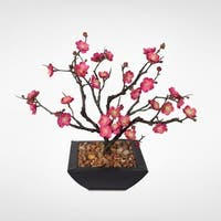 Pink Plum Blossom Bonsai with Natural Rocks in a Metal Container