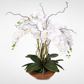 Real Touch Phalaenopsis Silk Orchid Arrangement with Curly Willow in Natural Teak Wood Bowl