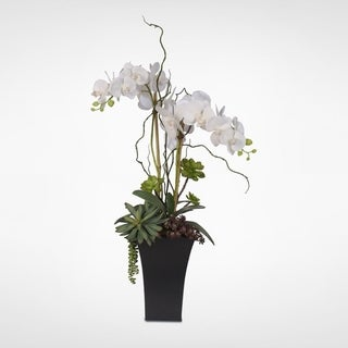 Real Touch White Phalaenopsis Silk Orchids with Succulents in a Tall Metal Container