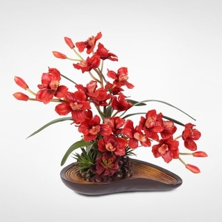 Red Cymbidium Orchid Arrangement with Succulents in a Curved Wooden Style Bowl