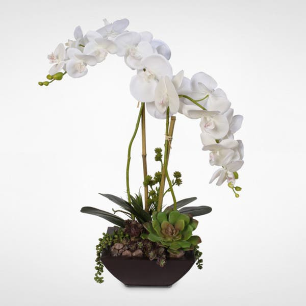 Real Touch White Phalaenopsis Silk Orchids With Succulents In A Modern Metal Container On Sale Overstock 12401139