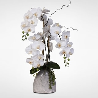 Real Touch White Phalaenopsis Silk Orchids with Succulents in a Marble Patten Pot