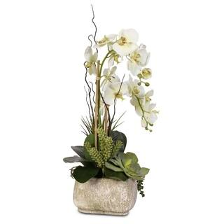 Buy orchids artificial plants online at overstock our best real touch phalaenopsis silk orchid arrangement with succulents in a stone pot mightylinksfo