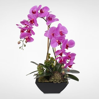Real Touch Pink Phalaenopsis Silk Orchids with Succulents in a Metal Pot