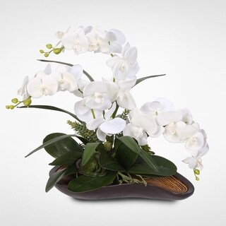 Real Touch Phalaenopsis Silk Orchids with Succulents in a Curved Wooden Style Bowl