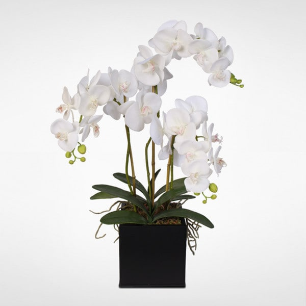 Real Touch Phalaenopsis Silk Orchids with Succulents in a Metal Pot. Opens flyout.