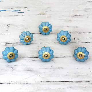 Handmade Set of 6 Ceramic 'Floral Beauties in Sky Blue' Cabinet Knobs (India)