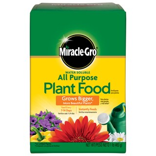 Miracle Gro 160101 1-pound Water Soluble All Purpose Plant Food 24-8-16