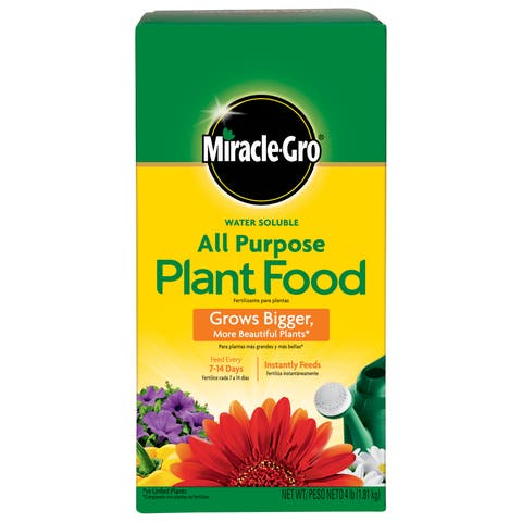 Miracle Gro 170101 4-pound Water Soluble All Purpose Plant Food 24-8-16