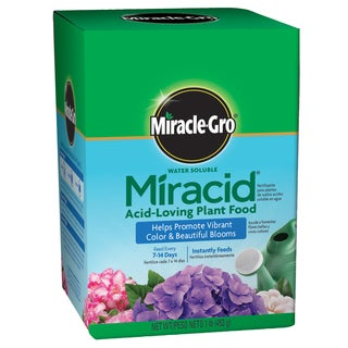 Miracle Gro 1750011 1-pound Water Soluble Miracid Acid-Loving Plant Food
