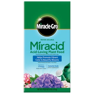 Miracle Gro 1850011 4-pound Water Soluble Miracid Acid-Loving Plant Food