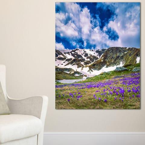 Spring Blooming Crocus Flowers - Landscape Art Print Canvas - Multi-color