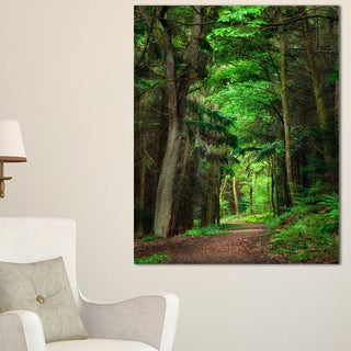 Dreamy Greenery in Dense Forest - Large Forest Wall Art Canvas