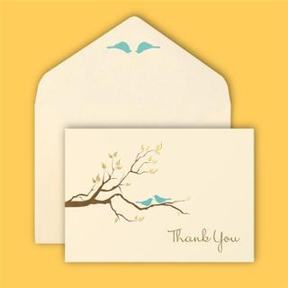 Brides Love Birds 40-count Thank You Card Set