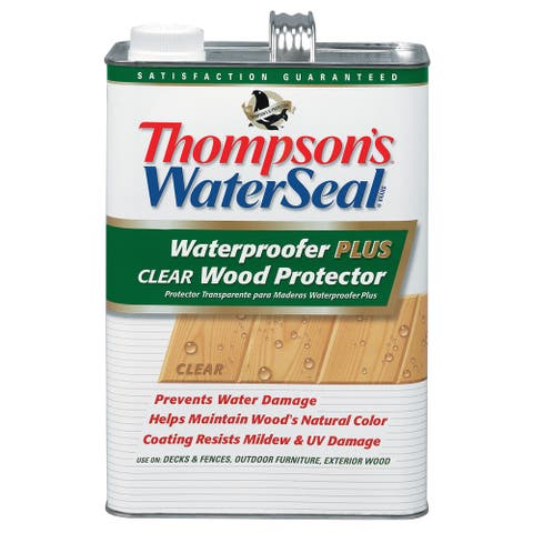 Thompsons Waterseal 21801 1 Gallon Clear Waterproofer PLUS