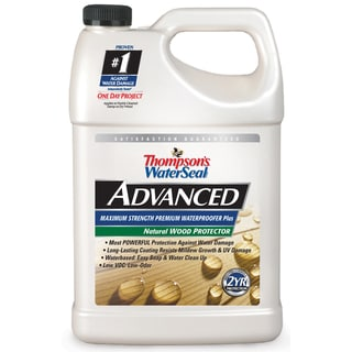 Thompsons Waterseal A21711 1 Gallon Advanced Natural Wood Protector