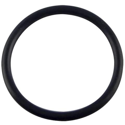 Sloan H-553 O-Rings For Assembly Body