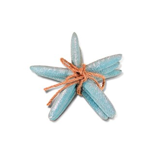 Puzzled Inc Nautical Decor Collection Turquoise Resin Starfish