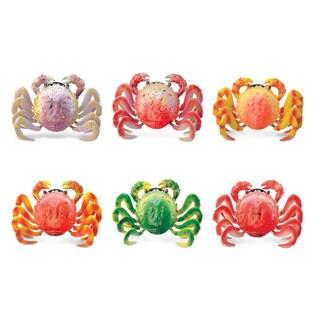 Puzzled Inc. Wild Crab Multicolored Plastic Bobble Magnet (set of 6)
