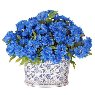 Jane Seymour Botanicals Wild Blue Cornflower Bouquet in 15-inch-wide Blue and White Oval Planter