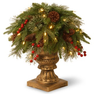 Green Plastic 24-inch Colonial Porch Bush with Clear Lights