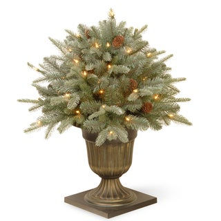 National Tree Company Frosted Arctic Spruce 24-inch Porch Bush with Clear Lights