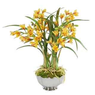 Jane Seymour Botanicals Cymbidium Orchids in 25-inch Bowl