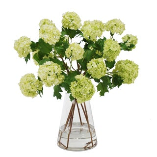 Jane Seymour Botanicals Viburnum Snowballs Bouquet in Glass Beaker 21-inch Tall Vase