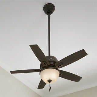 Hunter Fan Donegan Collection Brown 44-inch Ceiling Fan and Light Kit