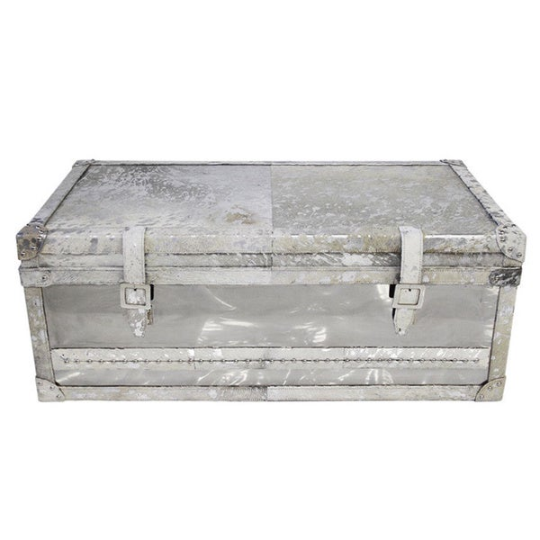 Forest Collection Steel And Cowhide Big Silver Trunk