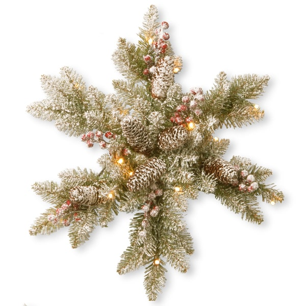 Dunhill Fir 18-inch Snowy Snowflake with White LED Lights. Opens flyout.