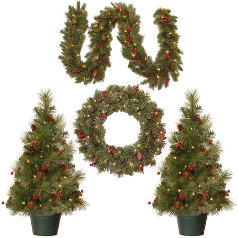 National Tree Company Christmas Cones and Berries Promotional Assortment with Battery Operated LED Lights