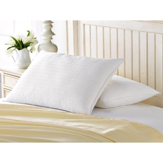 Hotel Luxe Memory Fiber Cotton Pillow (Set of 2)