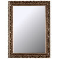Hitchcock Butterfield Pacifico Aged Waves Large Silver Transitional Mirror