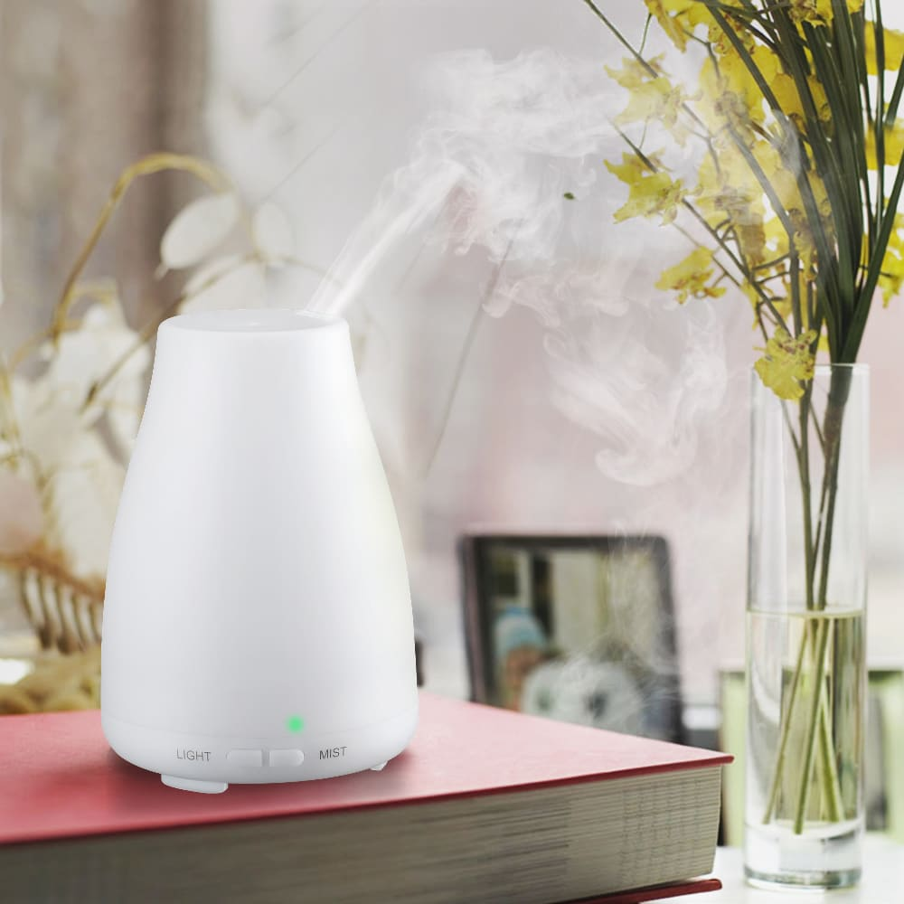 Coutlet Cool Mist Ultrasonic 6-hour Humidifier/Air Purifi...