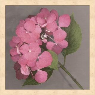 Erin Clark 'Pink Hydrangea' Pink Wood Floral Framed Art