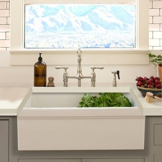 Highpoint Collection Decorative Farmhouse Fireclay Sink and Brushed Disposal Drain