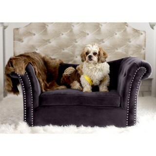 Dachshund Grey Velvet Tutfted Pet Couch with Nailhead Trim