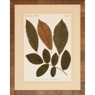 'Autumnal Leaves' Framed Art Print