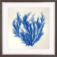 'Sea Tangle' Framed Art Print