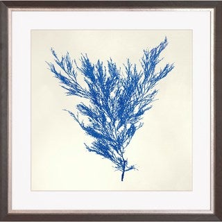 Art Virtuoso 'Sea Tangle' Framed Art Print