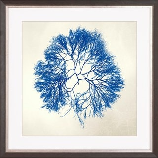 'Sea Tangle' Framed Art Print