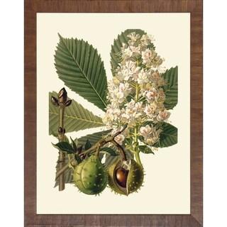 Art Virtuoso Baume Und Strucher 'Fruit Tree Branches' Wooden-framed Art Print