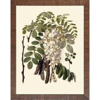 Baume Und Strucher 'Fruit Tree Branches' Brown Wood Framed Art Print