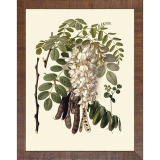 Baume Und Strucher 'Fruit Tree Branches' Brown Wood Framed Art Print