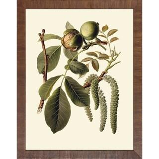 Art Virtuoso 'Fruit Tree Branches' Framed Art Print
